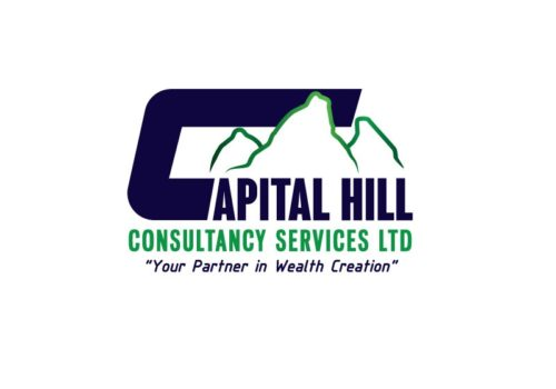 Captial Hill Consultancy Services Limited Logo Design