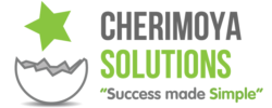 Website Design - Cherimoya Solutions